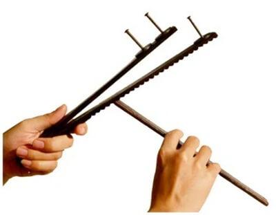 Vietnamese instrument senh tien